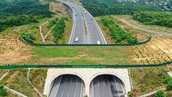 Autobahnen schützen Wildtiere mit ökologischen Brücken