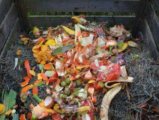 kas ir komposts kā sagatavot kompostu mājās kā rūpēties par kompostu