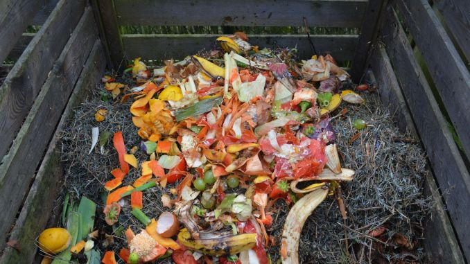 what is compost how to prepare compost at home how to care for compost