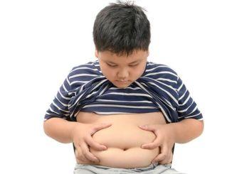 Forårsager fedme risiko hos små børn