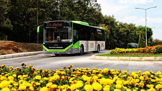 free transportation from sakarya metropolitan city to the high exam