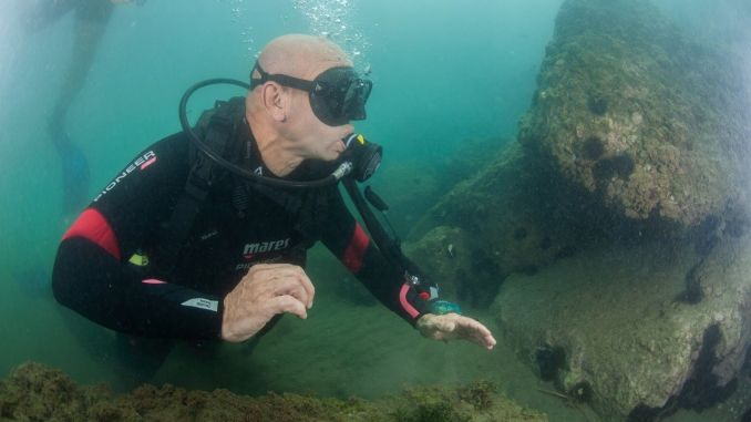 تفقد تونك سويير قاع خليج إزمير ، ولم يكن هناك أثر للصمغ