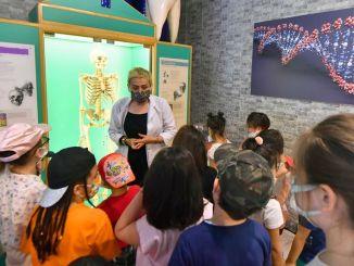 Тренинги продолжаются в научном центре feza gursey