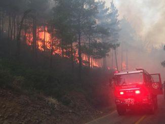 Die Feuerwehr von Izmir ist in Alarmbereitschaft für Wälder