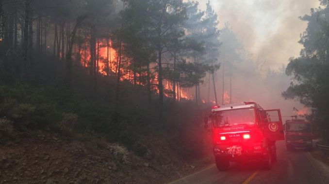 Izmir fire department is on the alert for forests
