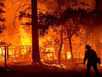 Лісові пожежі можна заздалегідь виявити за допомогою датчика, розробленого в університеті Білджі.