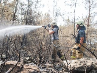 Hätten wir das Feuer nicht gestoppt, wäre die Feuerwehr von Izmir in den Keller gegangen.