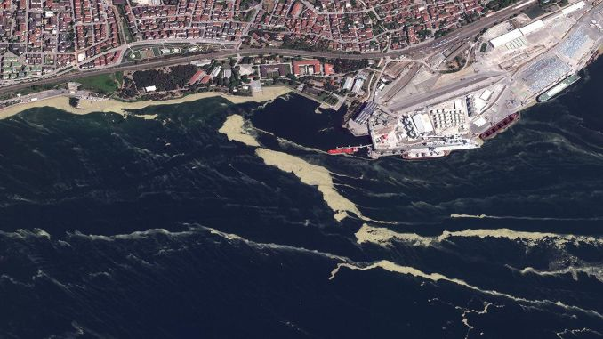 At the summit of the Marmara Sea, scientists discussed and made their recommendations