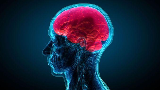 ניתן להתגבר על סרטן הראש והצוואר בעזרת מודעות
