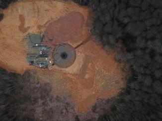 сјеверне шуме објавиле су извјештај о пријетњи уништавања