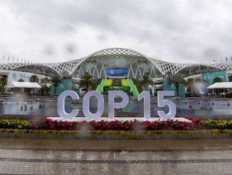 يبدأ مؤتمر التنوع البيولوجي اليوم في الصين