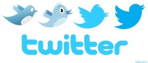 evolucion_logo_twitter