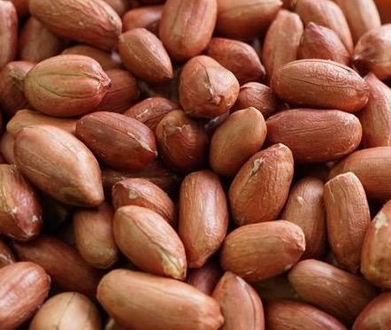 ピーナッツで生活習慣病などによる死亡リスクが20%低下する