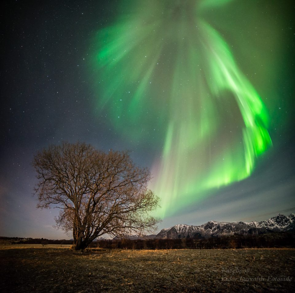 Northern Lights Blog