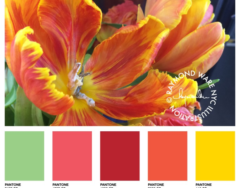 Pantone Perfection Tulip Hues