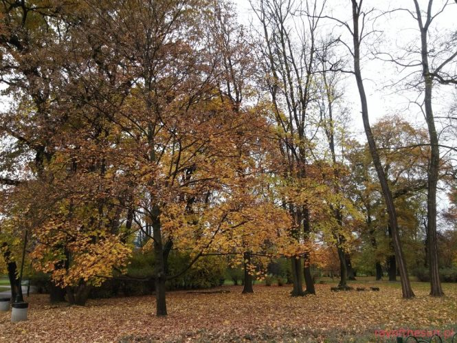 jesien-w-parku-jordana-4