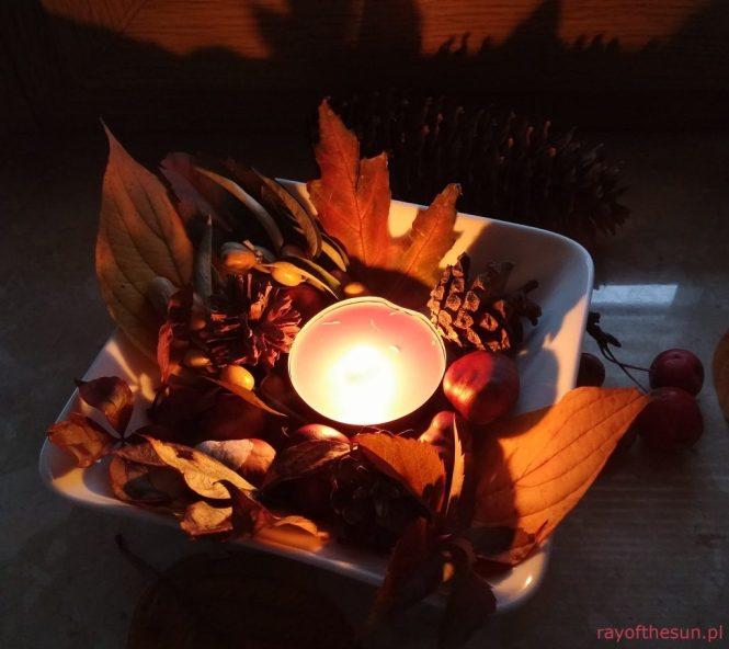 jesienny-stroik-rayofthesun