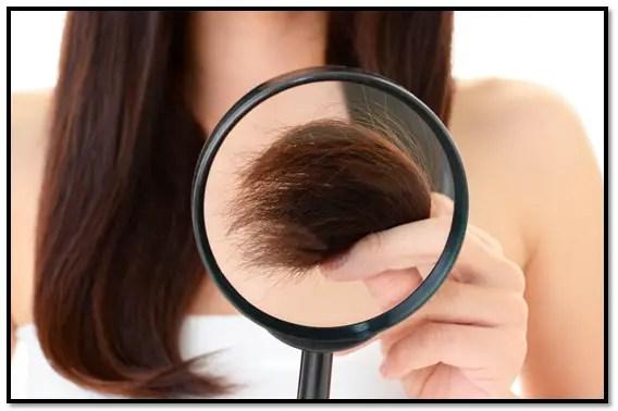 porosidad del cabello