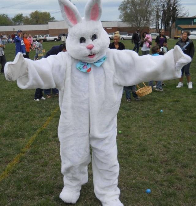 mock_bunny_trimmed