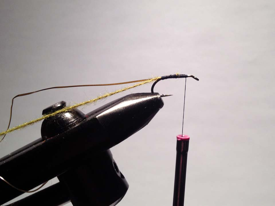 Olive Grizzly Dry Fly Step 5