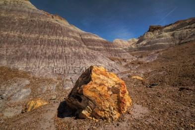 Arizona, Petrified Forest National Park