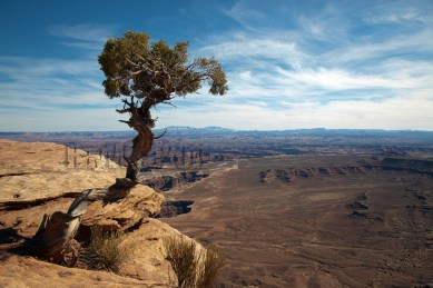 Cayonlands , Utah
