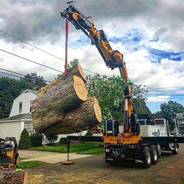 crane lifting large piece of wood