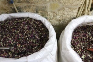 Arabian Spices