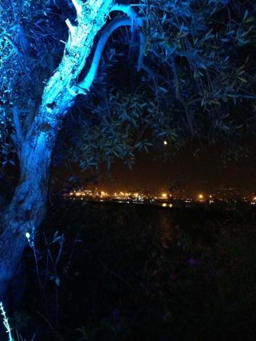 Beirut Night Life