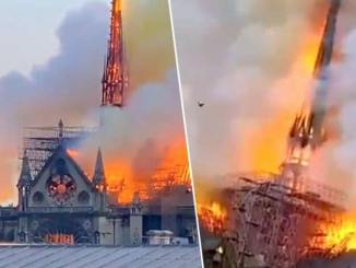 Notre Dame Cathedral spire has collapsed - Cui folosește incendiul de la Catedrala Notre-Dame de Paris ?