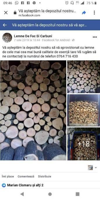 82874276 1095340027475852 227057685235761152 n 150x300 - Pădurea Băneasa - 1649 de arbori marcaţi
