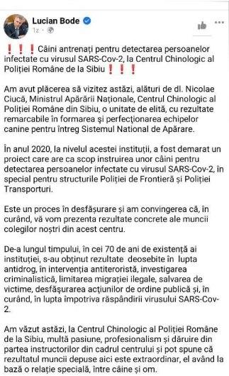 """dfgd fgf 183x300 - La Sibiu, şase câini sunt pregătiți să detecteze """"suspecţii"""" de Covid"""