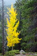 fall-colors-drive-2016-6723