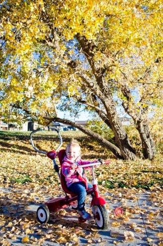 fall-photos-7024