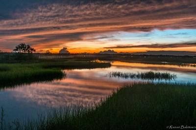 The Marsh – PHOTOGRAPHY