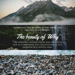 The beauty of 'Why'