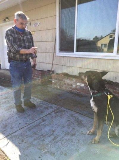 homem faz comando de ação para cão