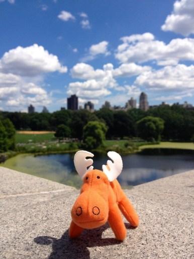 New-York-Central-Park-1