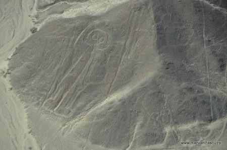 Nazca, Peru 15
