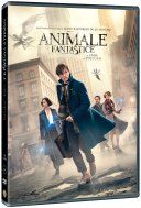 Fantastic-Beasts-and-Where-to-Find-Them-DVD_3D-pack