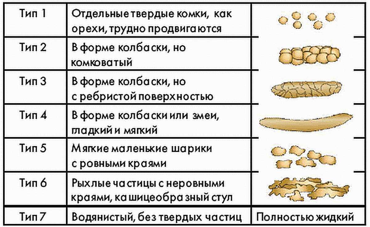 Types of Cala