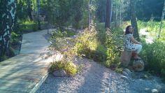 Парк в Академгородке 2