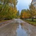 В Новосибирскую область пришли минусовые температуры