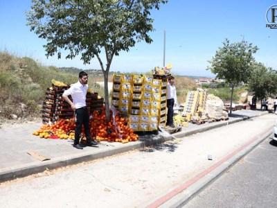 חלוקת תפוזים