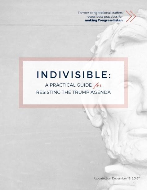 thumbnail of Resisting Trump