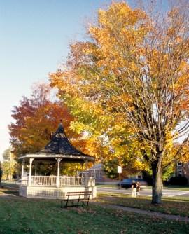 fall-pic-ludlow-village-green-1402406-639x791