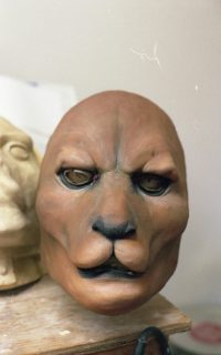 Scalps Skin for lion creature