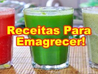 219 receitas para emagrecer sucos detox - Receitas De Sucos Detox Para Emagrecer.