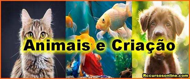 animais e criacao - Rc Cursos Online Com Certificado Digital.