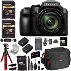Panasonic DMC-FZ80 Accessory Bundle